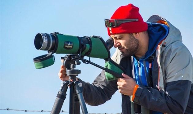 cp-millennial-birdwatching
