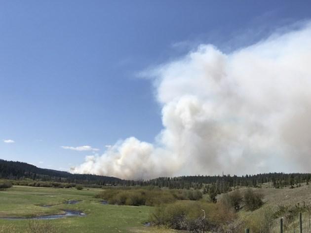 Forest fire near Logan Lake
