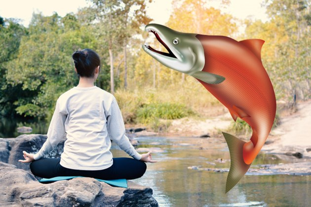 salmon-yoga