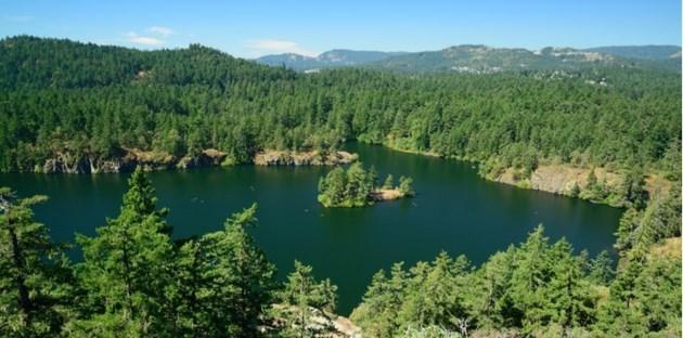 thetis-lake-regional-park-bc-min