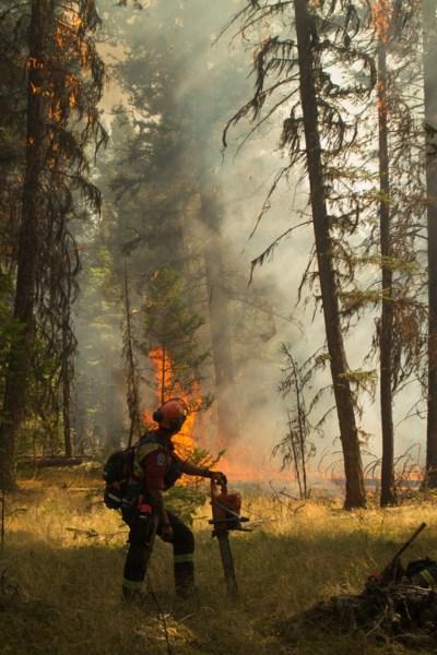 fire crews in woods