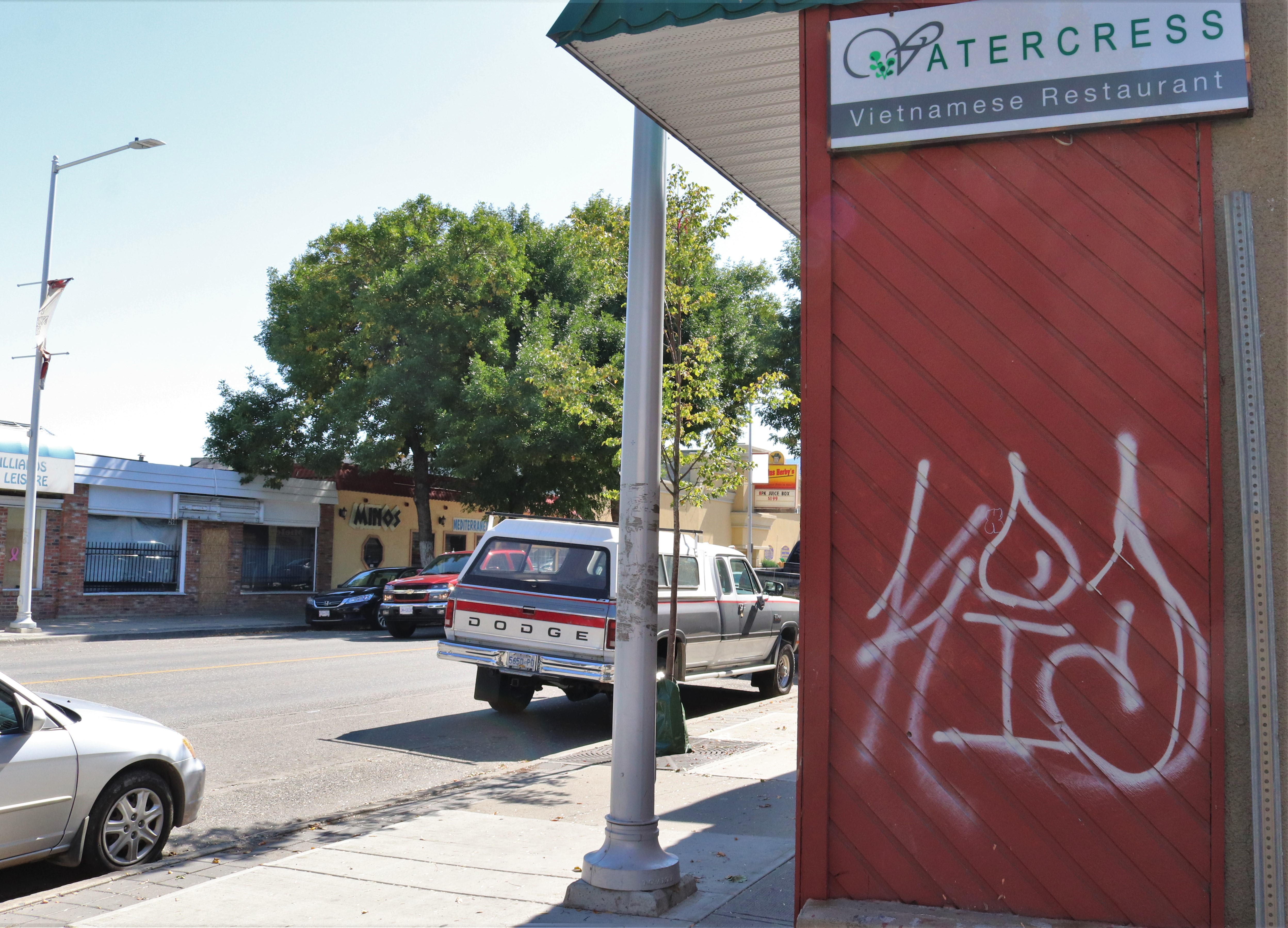 Kamloops business leader taking aim at North Shore taggers