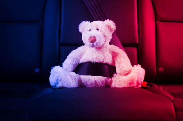 TeddybearinPolicecustody