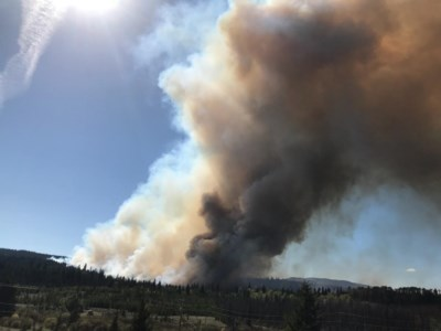 Logan Lake wildfire grows to 12 hectares