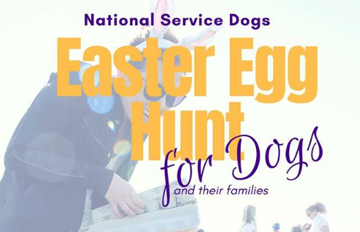 Beeping Easter Egg hunt caters to visually-impaired students