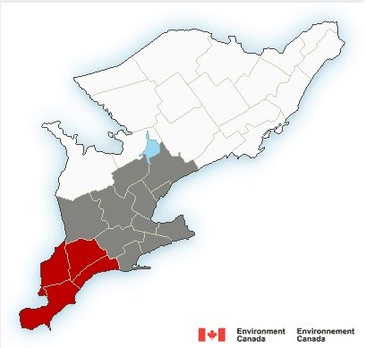 Freezing rain warning downgraded to freezing drizzle advisory for Guelph, Waterloo region