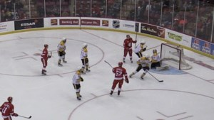 VIDEO: Greyhounds defeat Sting