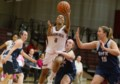 MUN clinches playoff berth with victory over Dalhousie