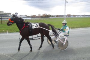 Jamieson comes home to drive five winners at Truro Raceway on Sunday