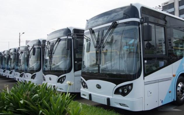 2019 06 25 BYD buses - Edited