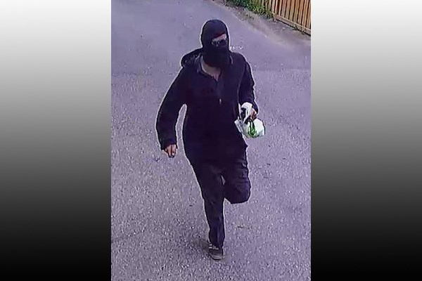 Theft suspect photo provided by York Regional Police