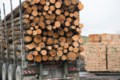 Our new lumber man in Washington
