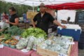 Growing local farms and business