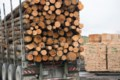 Ottawa helps forest producers weather lumber tariffs