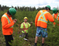 Lac Seul Forest makes the grade