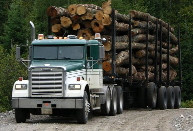 Logging truck (MTO photo)