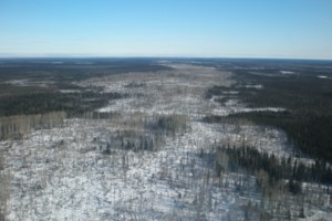 Stalled Ring of Fire development 're-energized' by road announcement, miner says