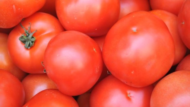tomatoes_cropped