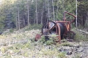 Cobalt explorer claims big dog status in historic camp
