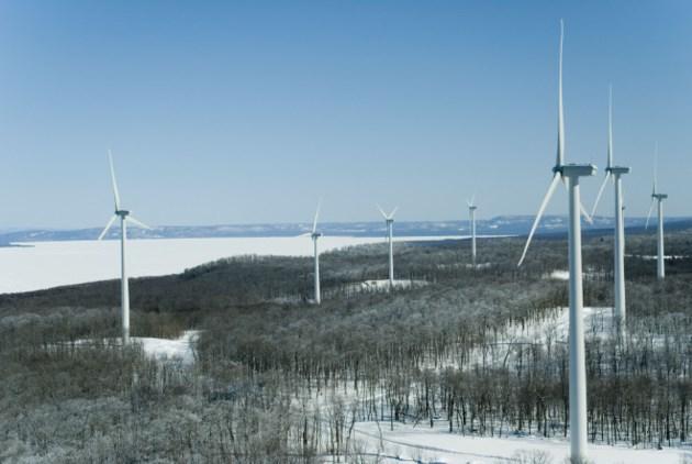 Wind Farm (40)