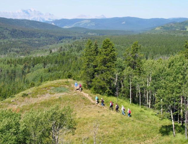 Sandy McNabb Hills Hike