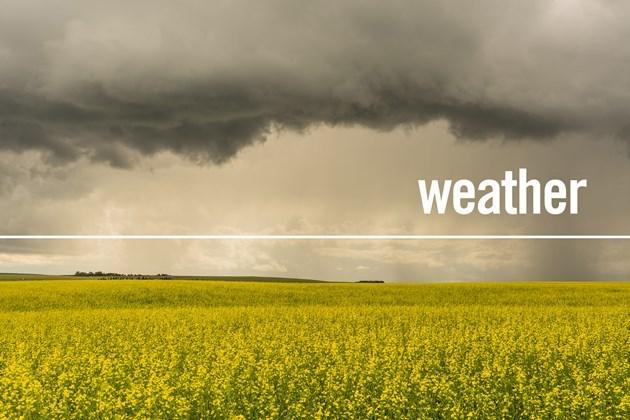 weather_alberta