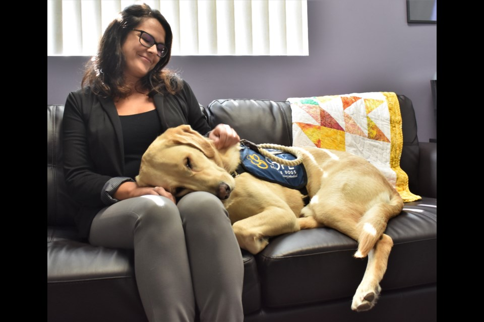 "Child and family advocate Tanya Devlin sits beside Moose, a facility dog that ""works"" alongside staff at the Child Advocacy Centre of Simcoe Muskoka at both their Orillia and Barrie offices. Moose has been a ""game changer"" for the centre and the families it supports. Dave Dawson/OrilliaMatters"