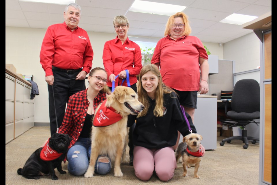 Orillia Secondary School students MJ Préfontaine, left, and Chloe Smith arranged to have St. John Ambulance therapy dogs at the school Thursday. Among them were Buster, left, with handler Bob Johnson, Sloan, centre, with handler Joan Whitman, and Jack, with handler Ronda Forsyth. Nathan Taylor/OrilliaMatters