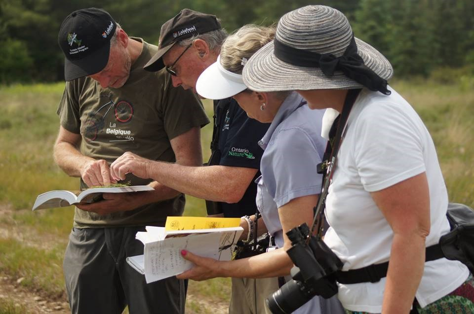 Bob Bowles, second from left, provides some help to students in the Ontario Master Naturalist Program. Lakehead University is hosting two workshops later this month as part of the pioneering program. Contributed photo