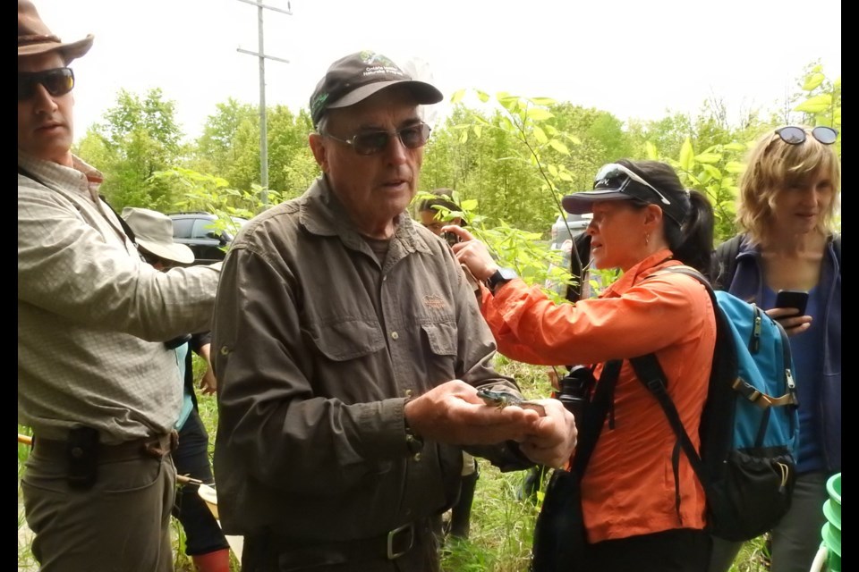 Bob Bowles explains some features about a frog to students in his master naturalist program - the first of its kind in Canada. Stu Blackwell photo