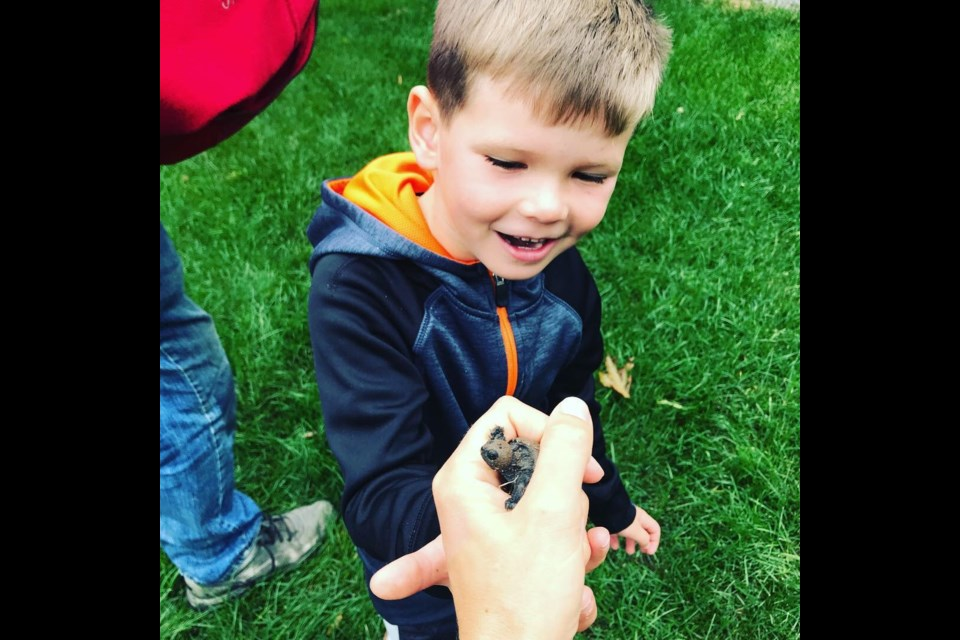 Luke and Owen Preston were mesmerized to see the baby turtles that were born in their yard.