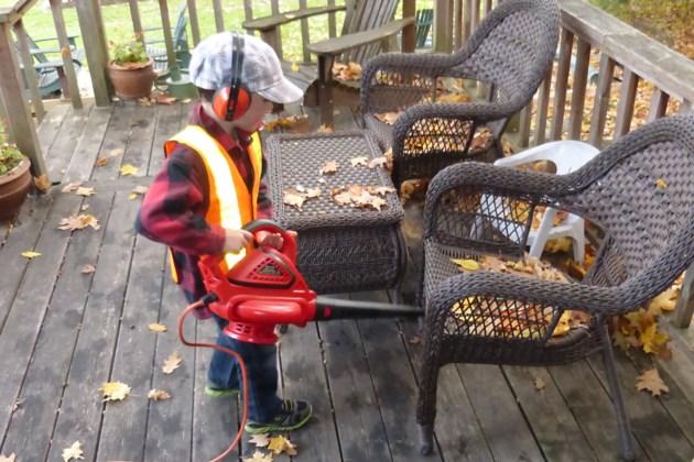 2018-10-28 leaf blower.jpg
