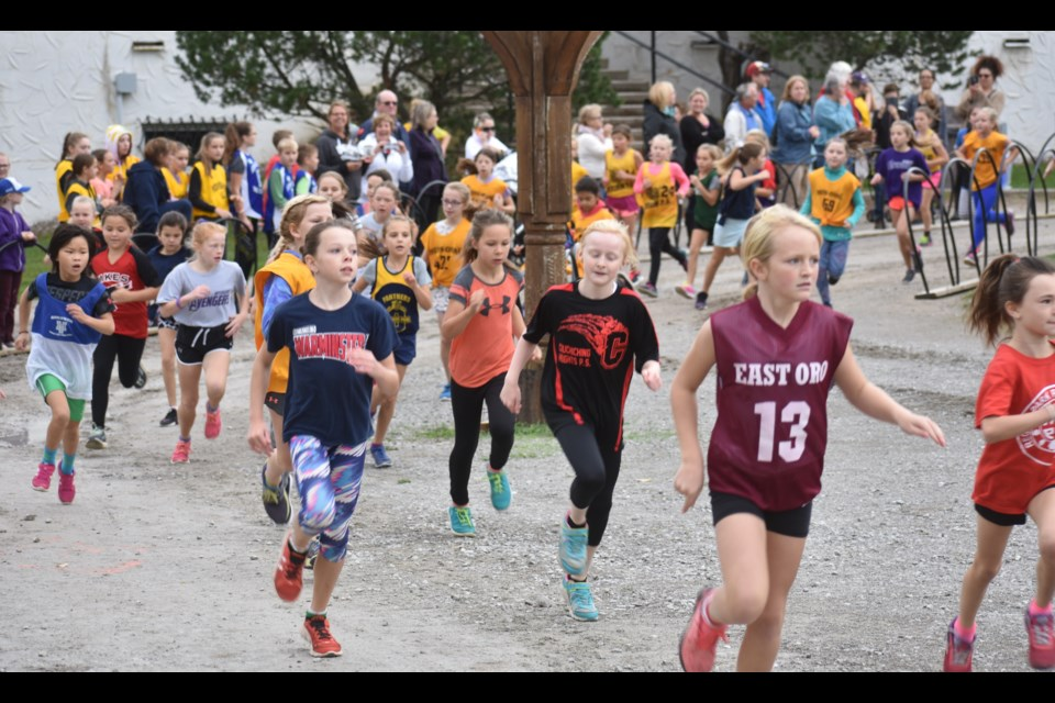 More than 100 students competed in the Grade 4 girls race at Thursday's Area 2 Cross-Country Running championship at Mount St. Louis. Dave Dawson/OrilliaMatters