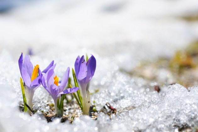 2018-03-20-Spring-AB