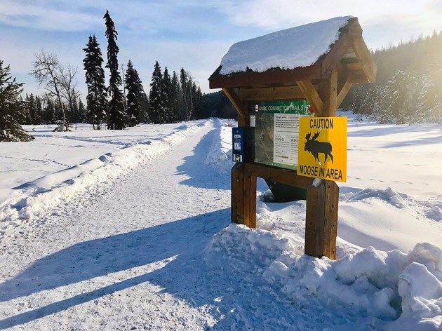 Moose warning Ginter's Meadow