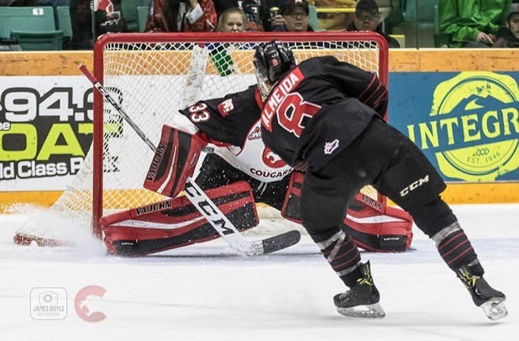 Former PG Cougar Justin Almeida (#8) takes a shot for the Moose Jaw Warriors on goaltender Isaiah DiLaura at the CN Centre (via Prince George Cougars/James Doyle Photography)
