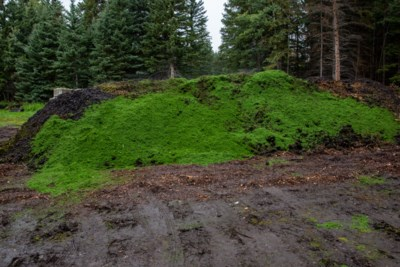 20190910 Canmore Golf Compost 0004