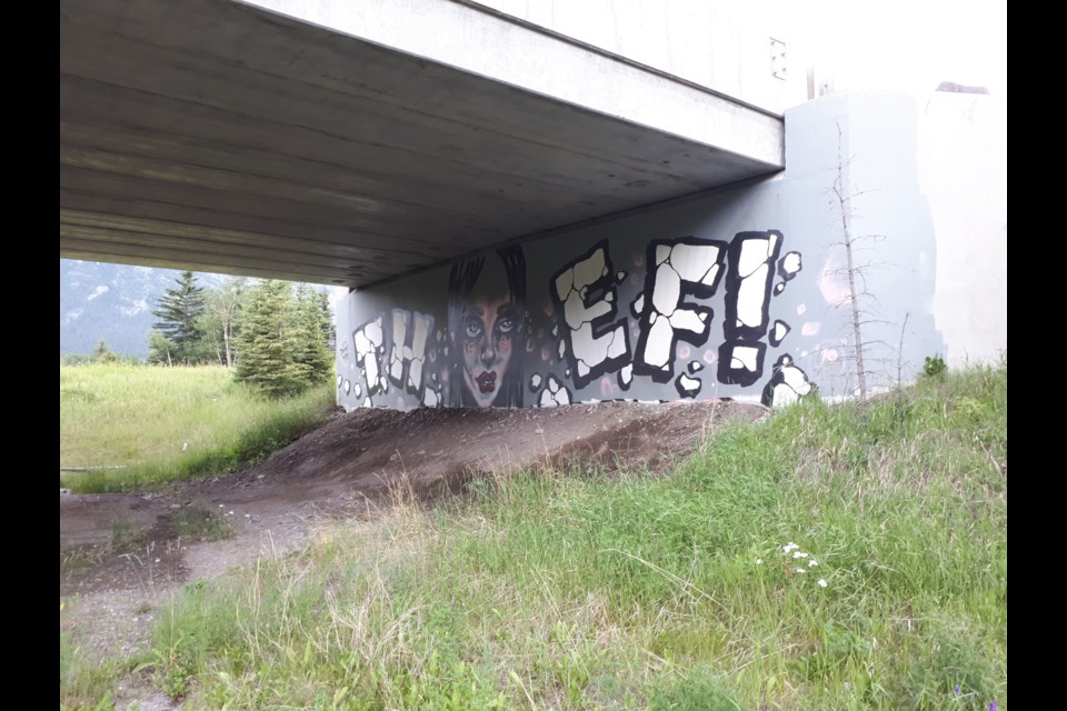 A large mural was painted on the wall of the wildlife underpass near Deadman's Flats on July 6. Photo provided.