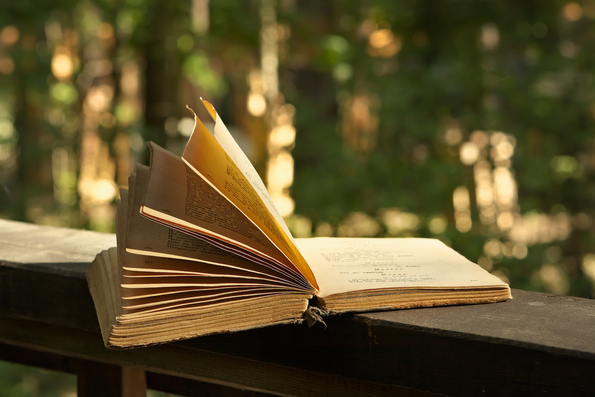 BEYOND LOCAL: No vacation this summer? Let a book transport you to foreign lands