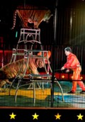 Circus lionized for cutting animal acts will bring them back