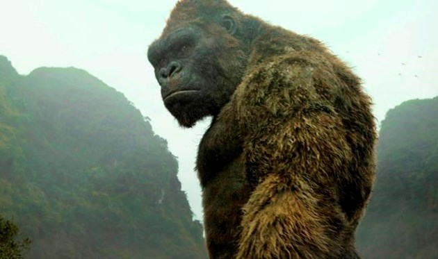 Musical of 'King Kong' to roar on Broadway next year