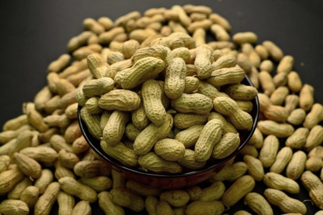 New Study Suggests Treatment >> Study Finds Peanut Allergy Treatment Safe For Allergists To Use With