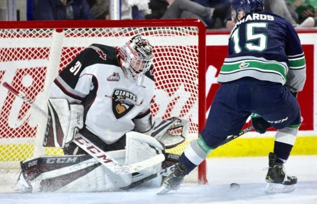 Giants Don T Mind Underdog Status Heading Into Whl Finals Against