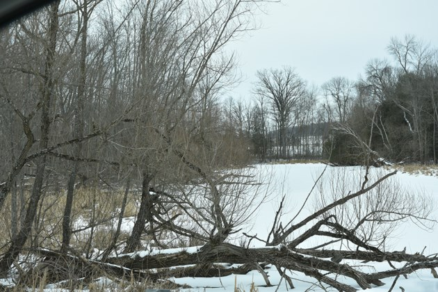 USED 2019-02-19-fraser creek winter