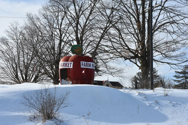 USED 2019-02-27-winter farm market