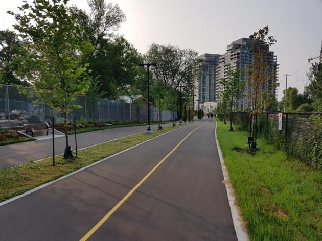 Trail in Waterloo Park