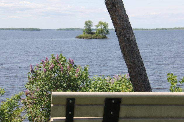 USED 2018-06-28goodmorning  1  A serene place to collect your thoughts. Photo by Brenda Turl for BayToday.