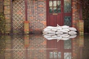 <b>From the Desk of Jay Fallis:</b> On flooded basements and the will to act