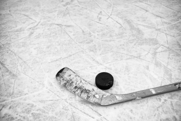 hockey stick stock
