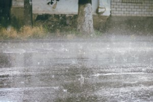 Rain alert continues for Sault and area